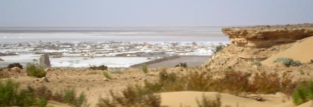 sahara-salinas1p.jpg