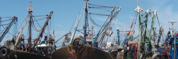 pesqueros_sahara_acuerdo.jpg