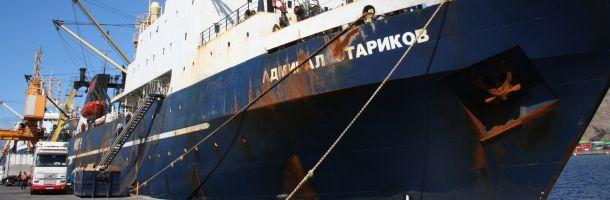 admiral_starikov3_610.jpg