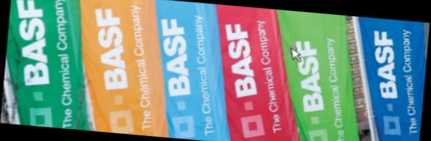 basf_flags.jpg