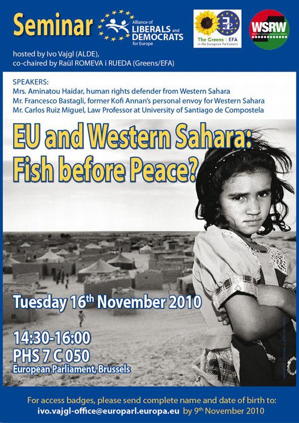seminar_poster-16.11.2010-sahara-mail_610.jpg