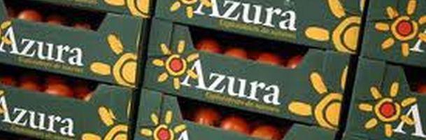 azura_tomatoes_610.jpg