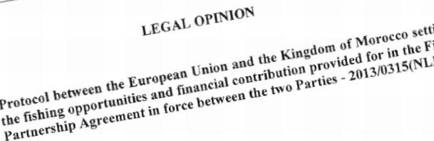 legal_opinion.jpg