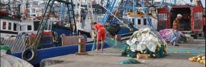 tn_moroccan_fishermen_unloading_driftnets_in_tangiers_oceana.jpg