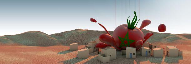 conflict_tomato_610.jpg